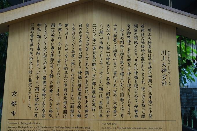 川上大神宮社 No8