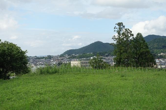 柊野_堰堤_庄田橋 No2