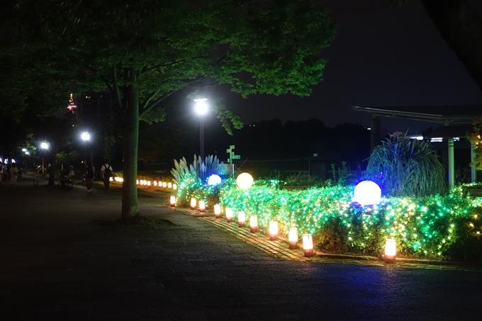 京の七夕_2019_梅小路 No23