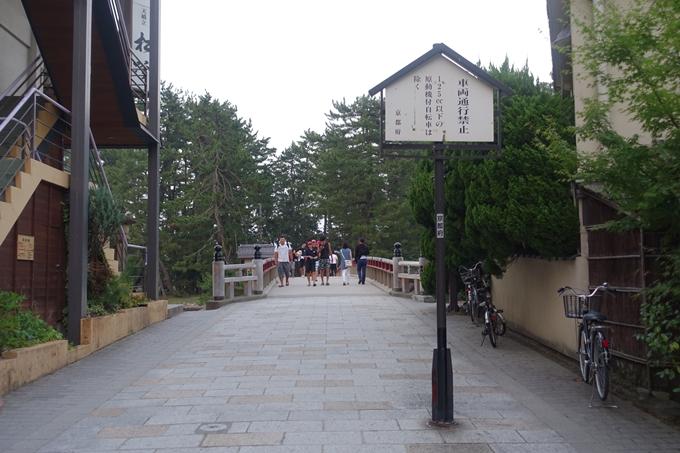 京の七夕_2019_宮津 No15