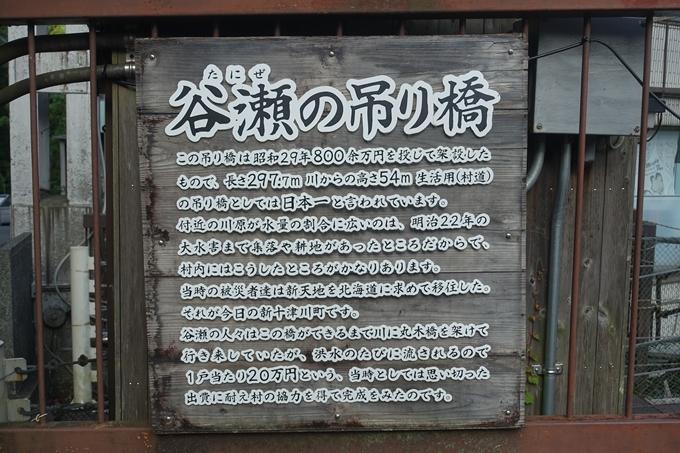 番外編_奈良_十津川_谷瀬吊り橋 No9