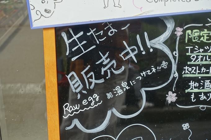 番外編_和歌山_湯の峰温泉 No8