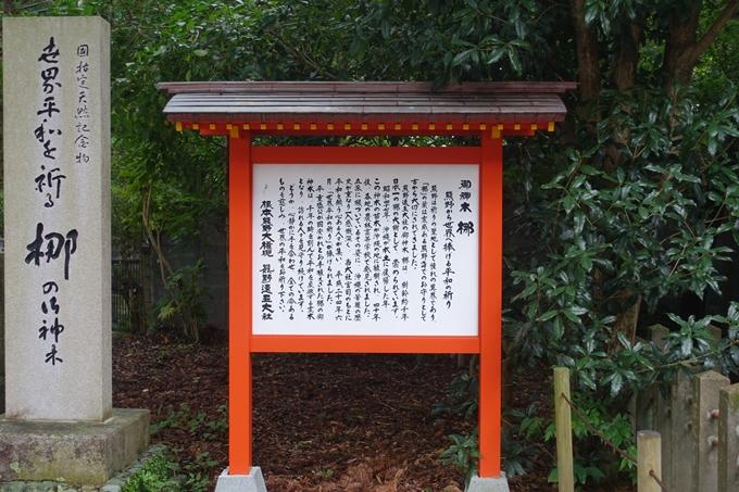 番外編_和歌山_速玉神社 No14