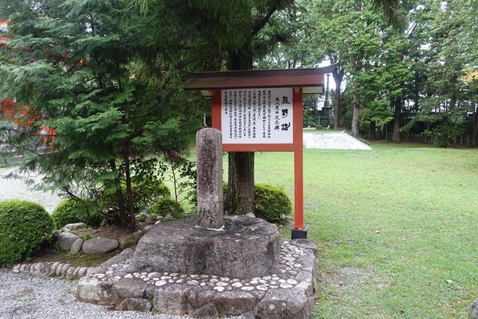 番外編_和歌山_速玉神社 No48