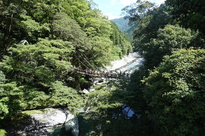 番外編_徳島 祖谷のかずら橋 No16