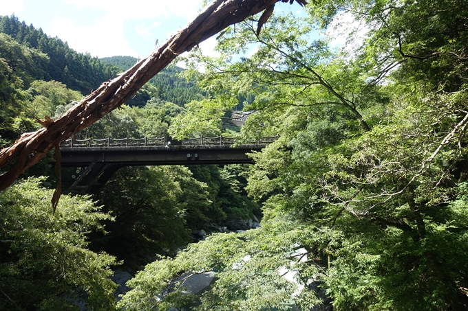番外編_徳島 祖谷のかずら橋 No32