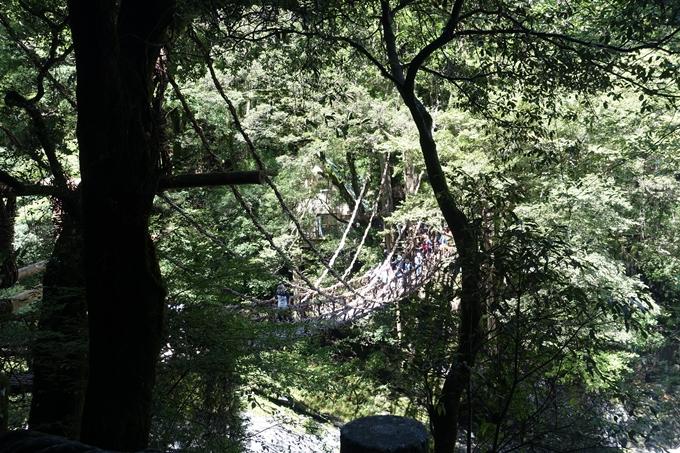 番外編_徳島 祖谷のかずら橋 No39