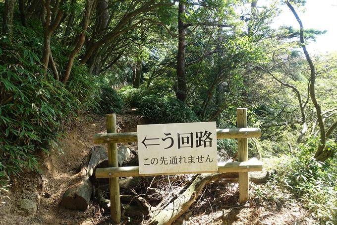 番外編_兵庫_六甲山 No115