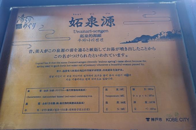 番外編_兵庫_六甲山 No137