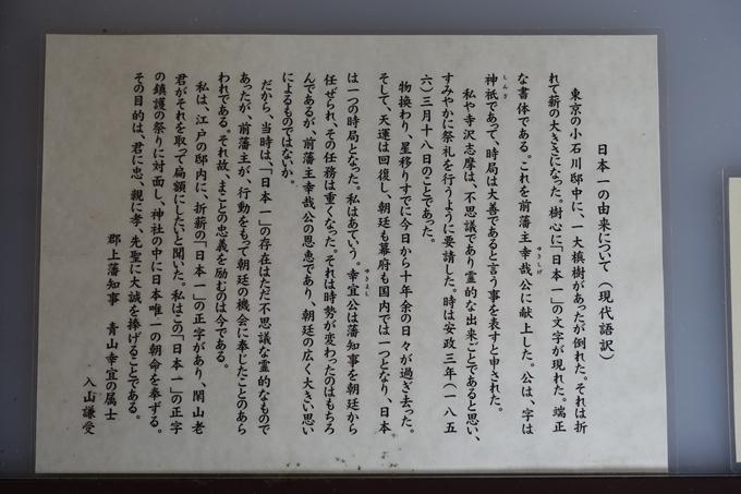 番外編_岐阜_郡上八幡城 No32