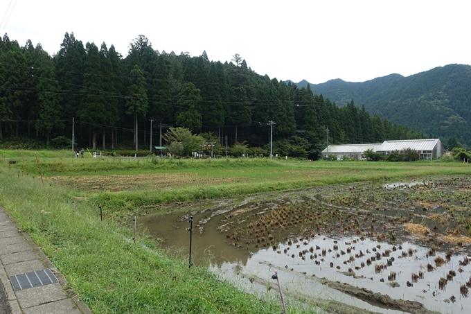 番外編_岐阜_関_モネの池 No2