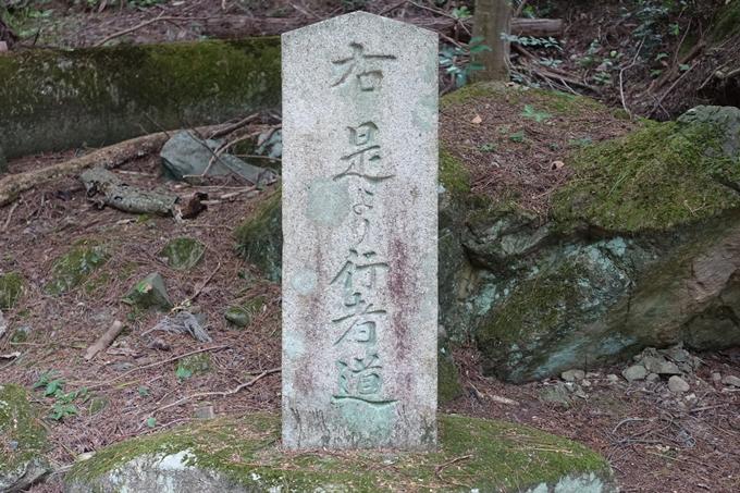 番外編_大阪_剣尾山_横尾山 No13