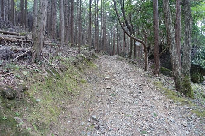 番外編_大阪_剣尾山_横尾山 No16