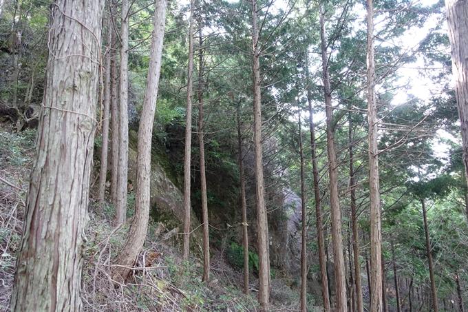 番外編_大阪_剣尾山_横尾山 No35