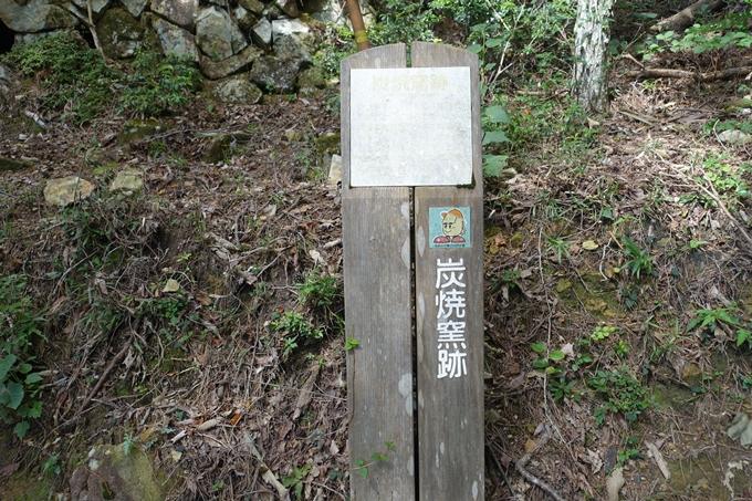 番外編_大阪_剣尾山_横尾山 No50