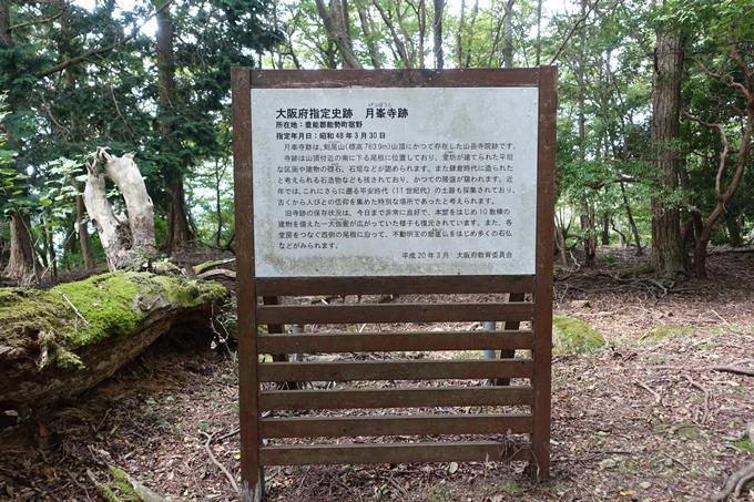 番外編_大阪_剣尾山_横尾山 No57