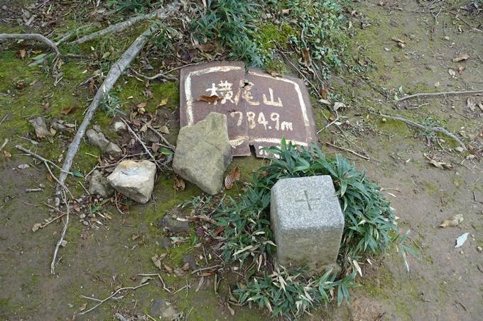 番外編_大阪_剣尾山_横尾山 No91