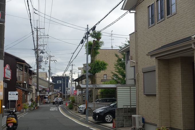 總神社 No4