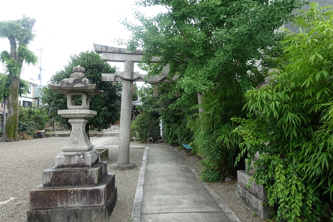 總神社 No11