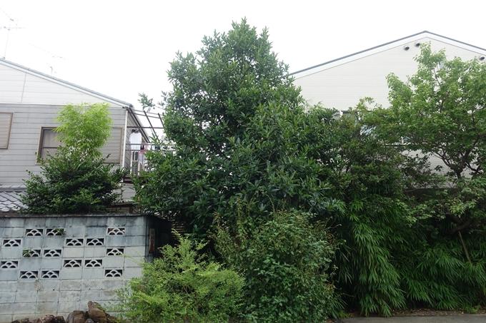 總神社 No367
