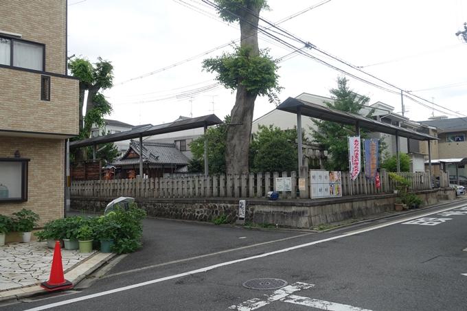 總神社 No9