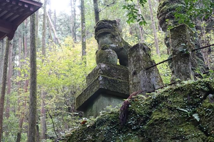番外編_九州_熊本県_上色見熊野座神社 No34