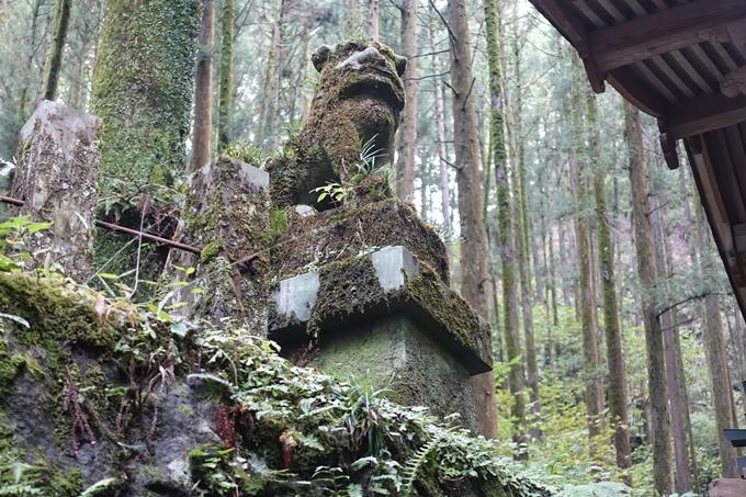 番外編_九州_熊本県_上色見熊野座神社 No35