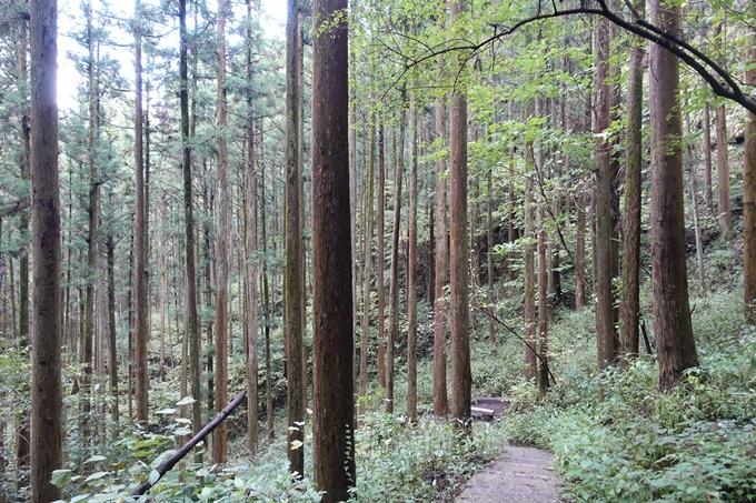 番外編_九州_熊本県_上色見熊野座神社 No63