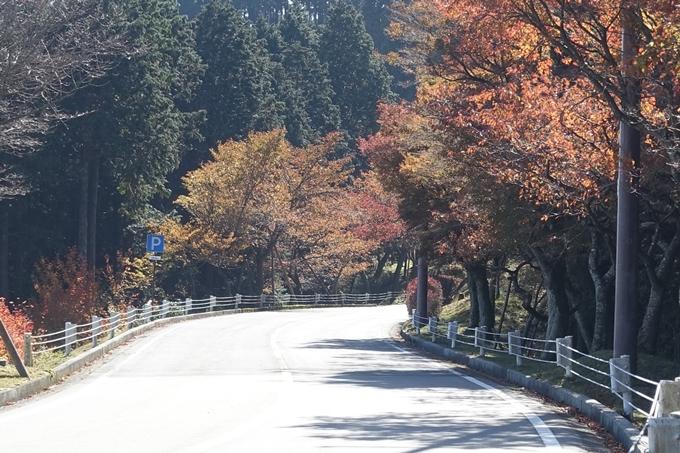 京都_紅葉情報_2019_02 比叡山ドライブウェイ No21