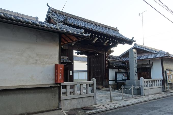 京都_紅葉情報_2019_03 頂妙寺 いちょう No6