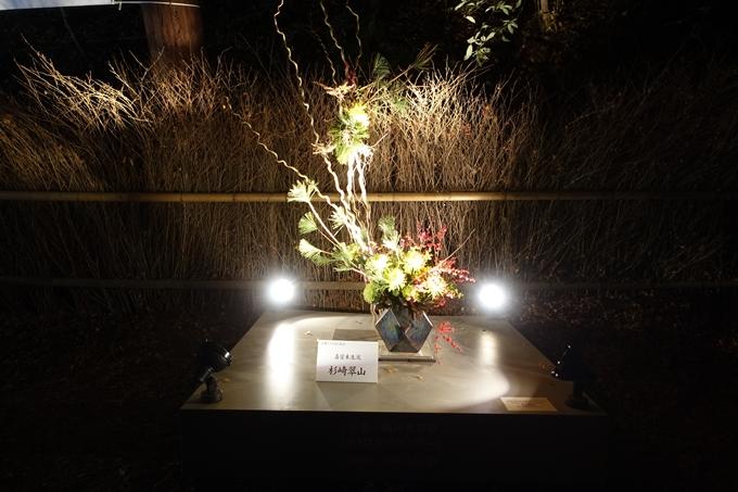 嵐山花灯路_2019_02 No15