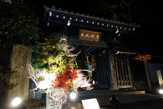 嵐山花灯路_2019_02 No23