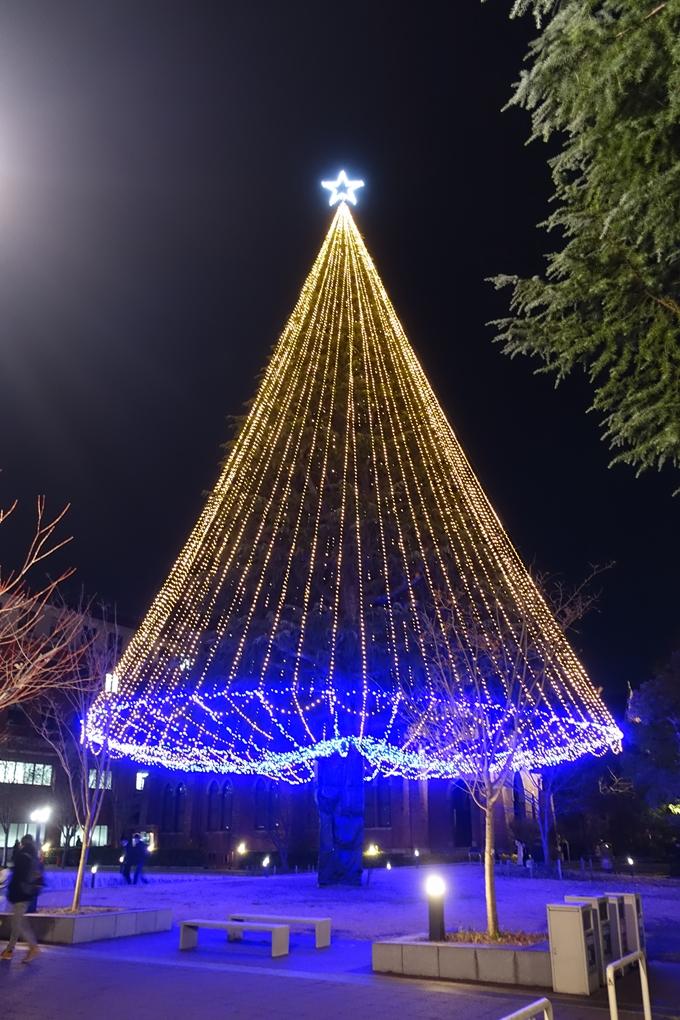同志社大学_クリスマスイルミネーション_2019 No3