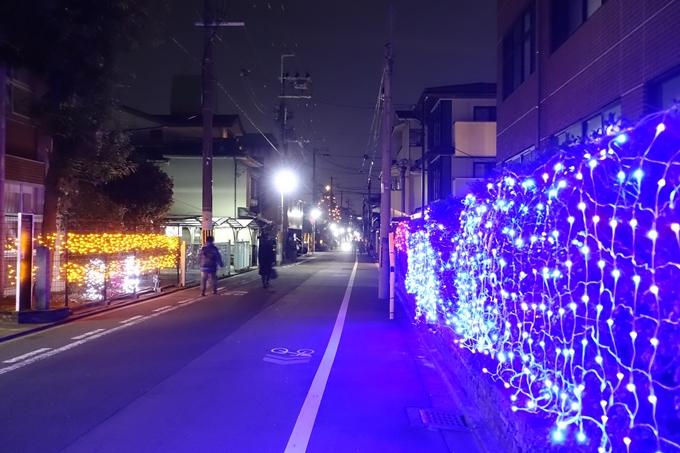 平安女学院_イルミネーション_2019 No18