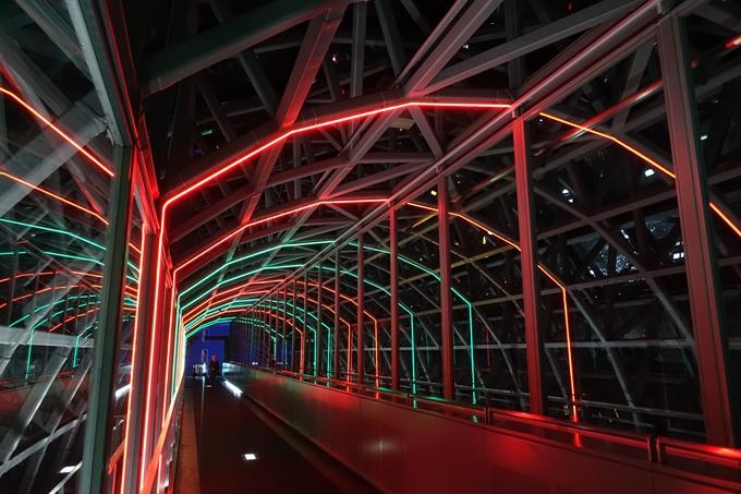 京都駅ビル_イルミネーション No14