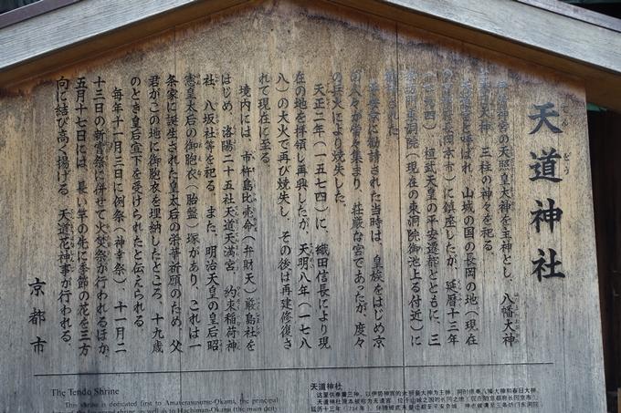 天道神社 No6