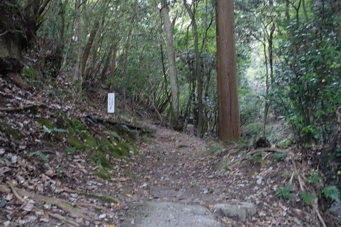 小沢蘆庵の墓 No7