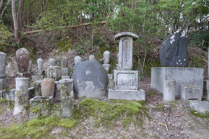 小沢蘆庵の墓 No13