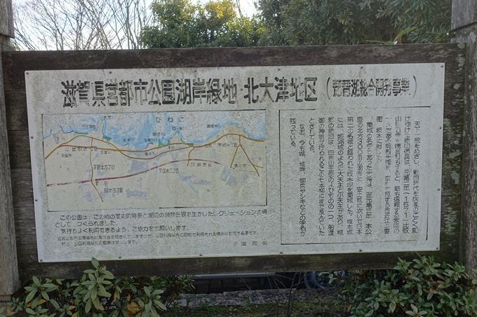 麒麟がくる_坂本城址公園 No4