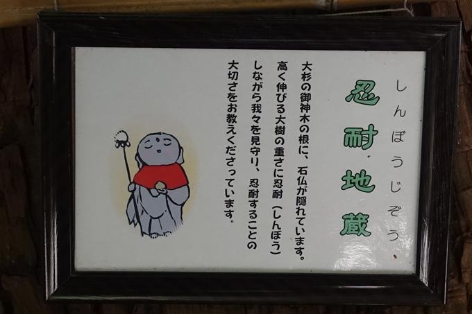 日吉大社 No56