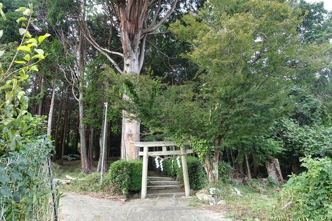 九社神社 No2