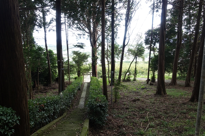 九社神社 No7
