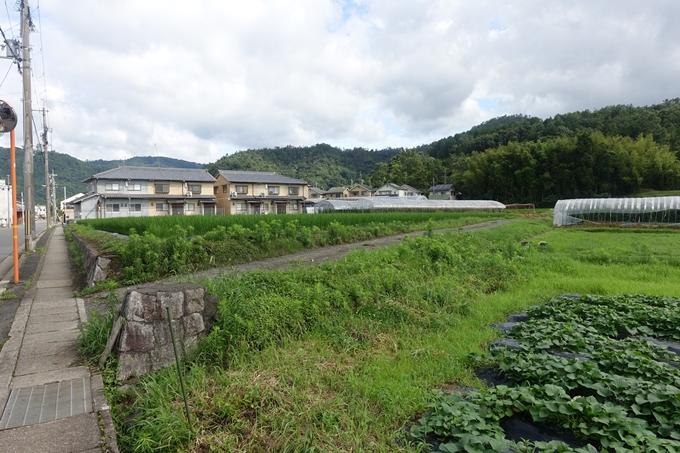 柊野貴船神社 No4