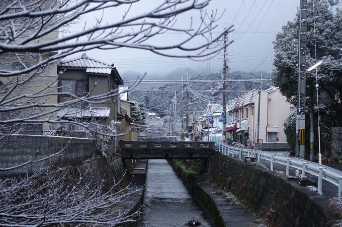 京都市内_雪景色_2020 No4