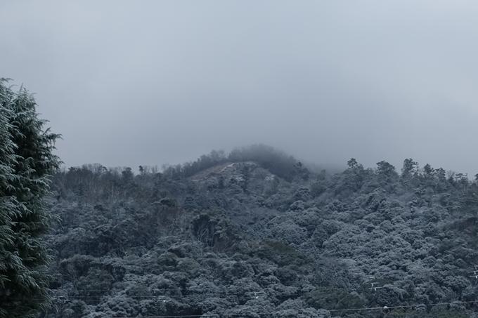 京都市内_雪景色_2020 No10