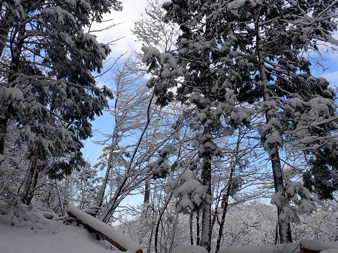 愛宕山_積雪 No35