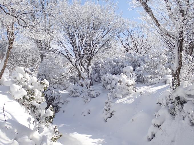 愛宕山_積雪 No70