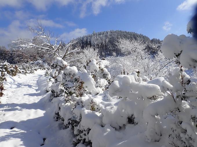 愛宕山_積雪 No78