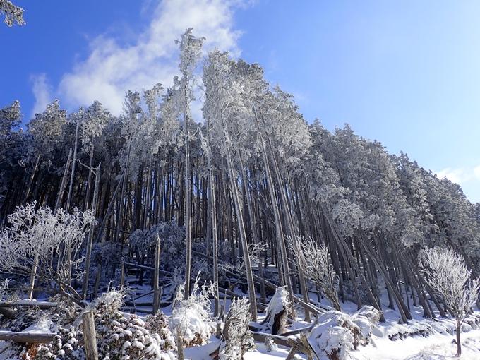 愛宕山_積雪 No92