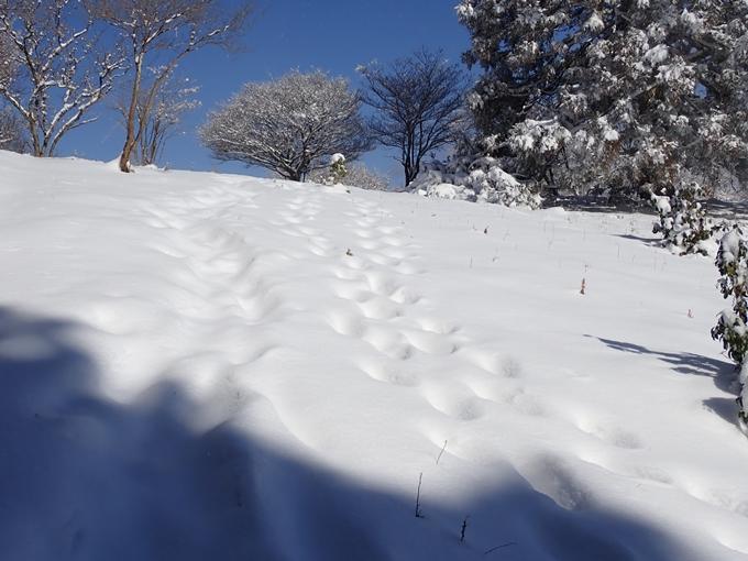 愛宕山_積雪 No115